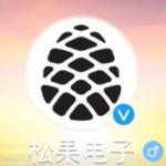 Xiaomi Pinecore выйдут в 2017 году