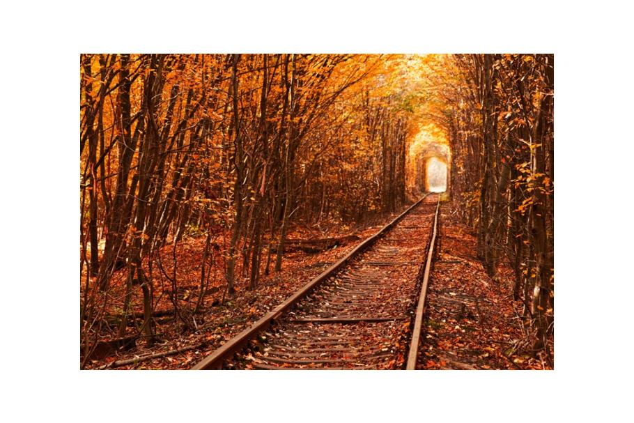 Путешествуем по Украине: Тоннель любви в поселке Клевань (Ровенщина)