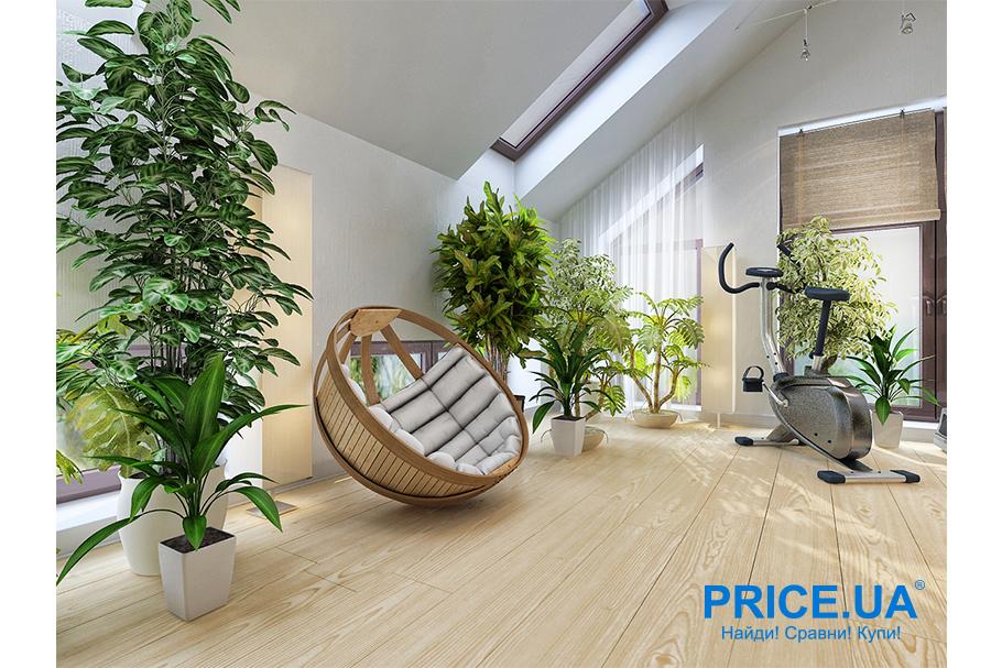 Создаем уют в жилище: без комнатных растений не обойтись
