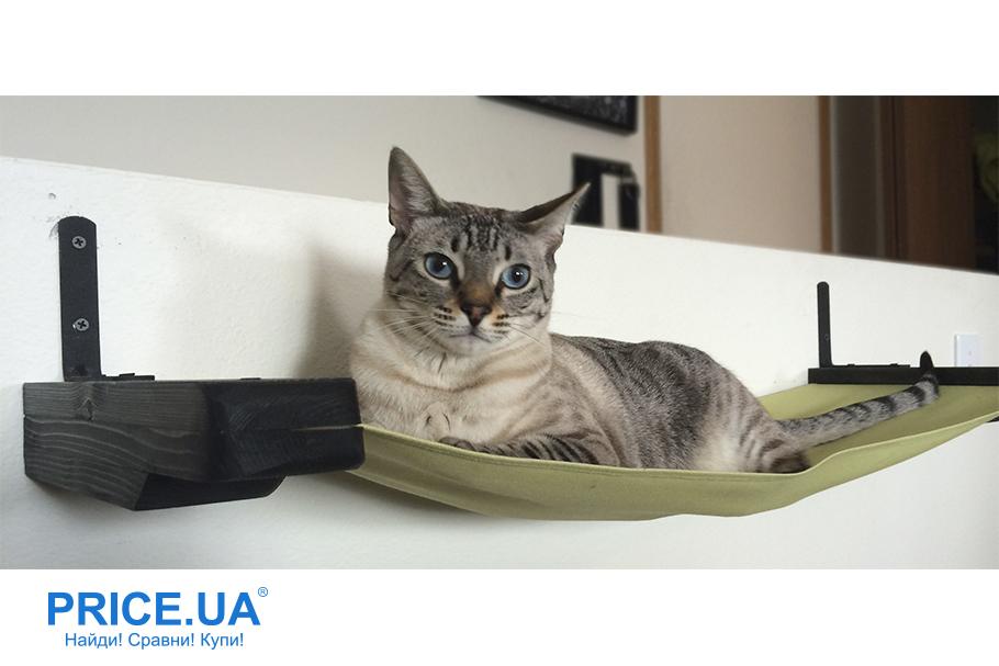 Как сделать лежак для кошки. Гамак