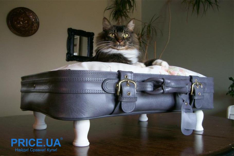 Как сделать лежак для кошки. Лежанка на ножках