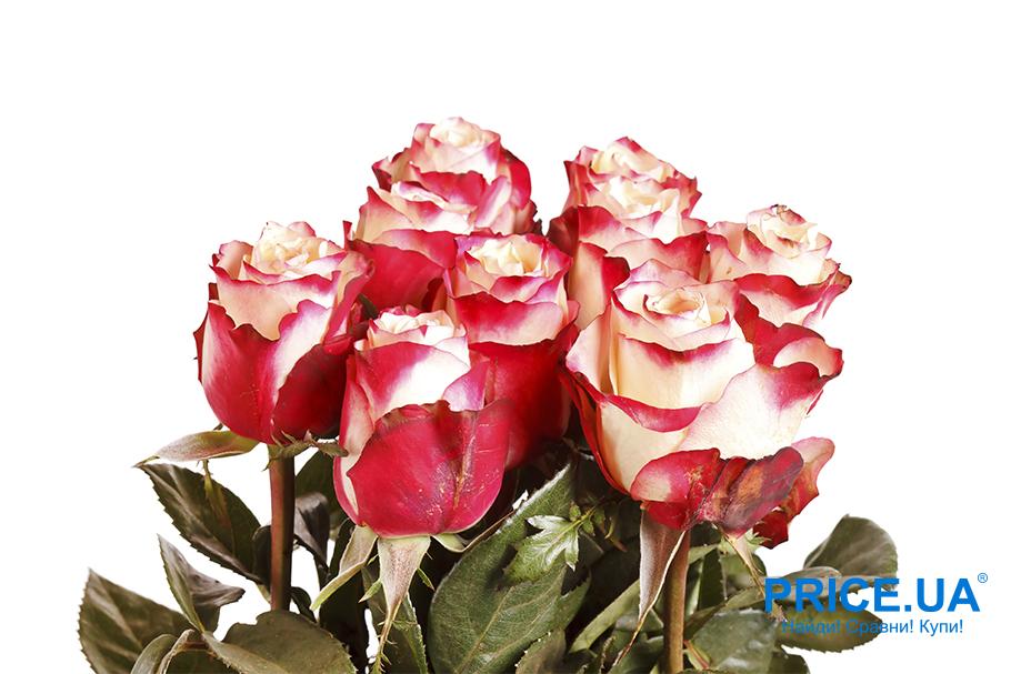 Ликбез по выбору цветов на 8 Марта. Букет для жены