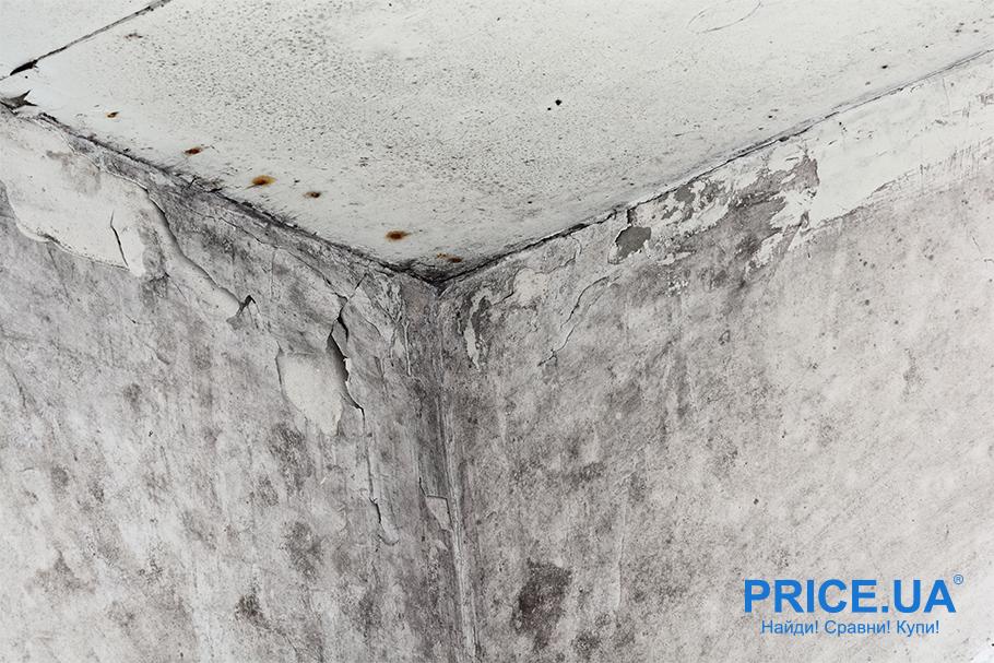 Боремся с плесенью: стоит утеплить стены в старом доме