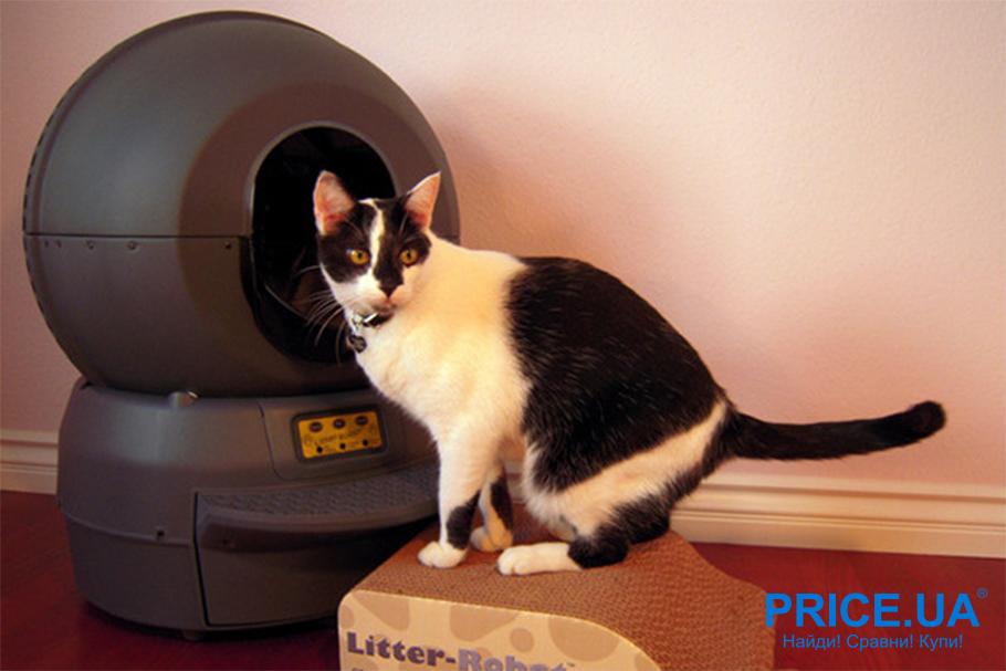 Как выбрать автоматический туалет для кота?