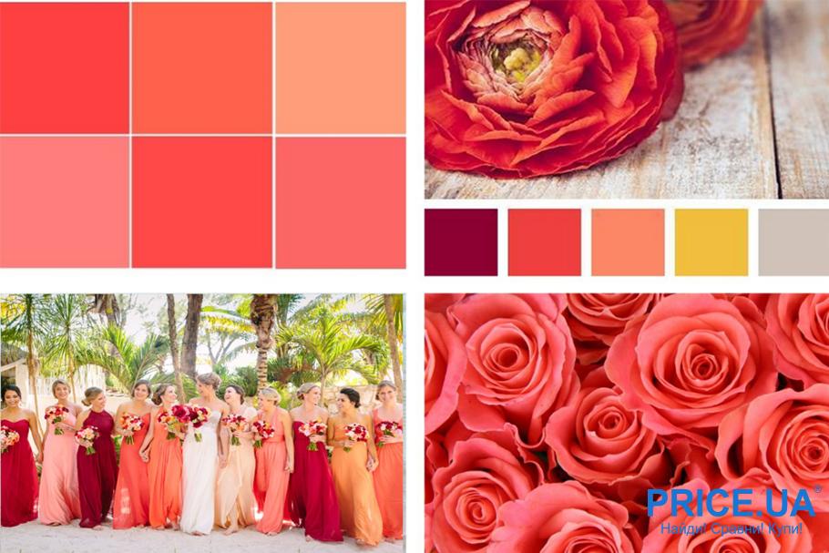 Правила цвета для свадьбы