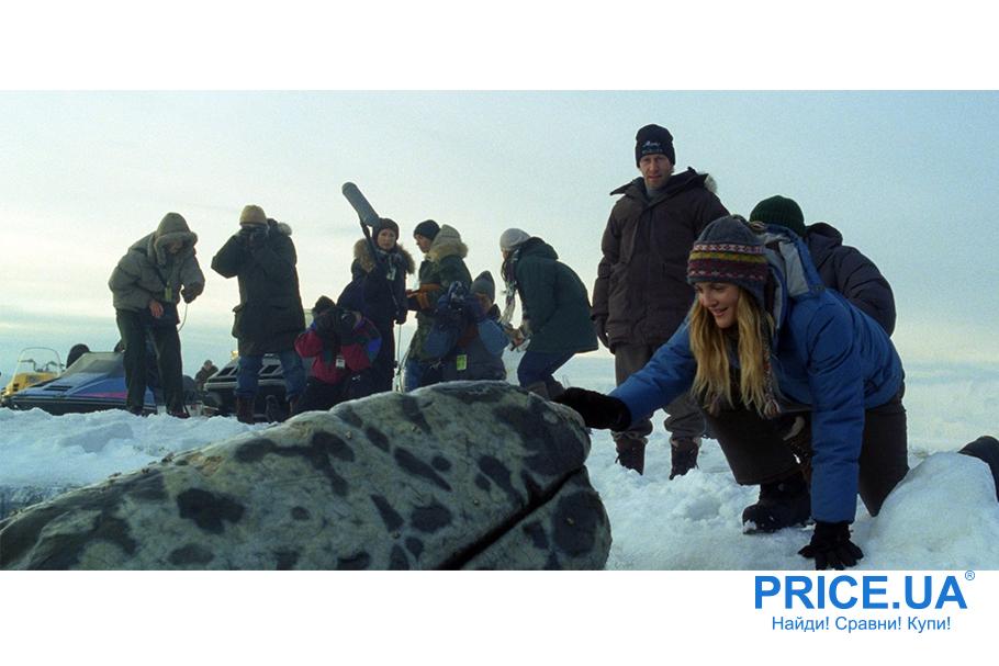 """Добрейшие фильмы для всей семьи. """"Все любят китов"""", 2012"""