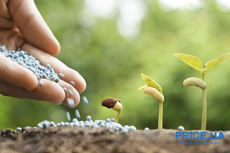 Удобрение земли: минеральные удобрения