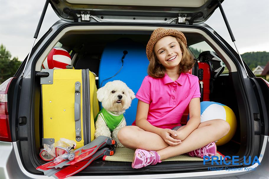 С собакой в путешествие: что нужно учесть. Список собачьих вещей