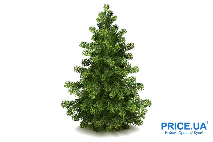 Живая елка или исскуственная - какая лучше? Плюсы искусственной
