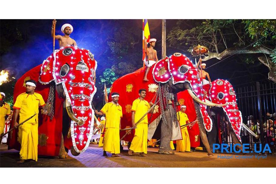 Новый год не дома: куда поехать? Шри-Ланка