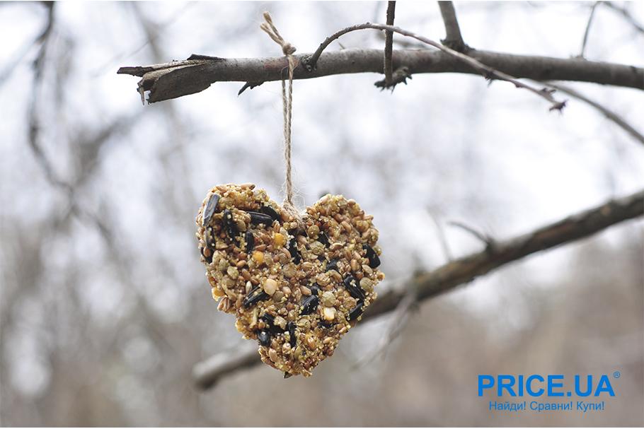 Кормушка для птиц своими руками. Зерновое печенье