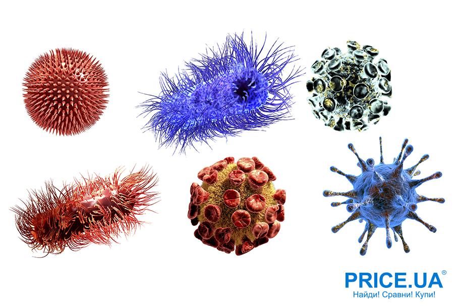 Список средств защиты во время эпидемии гриппа. Виды вирусов