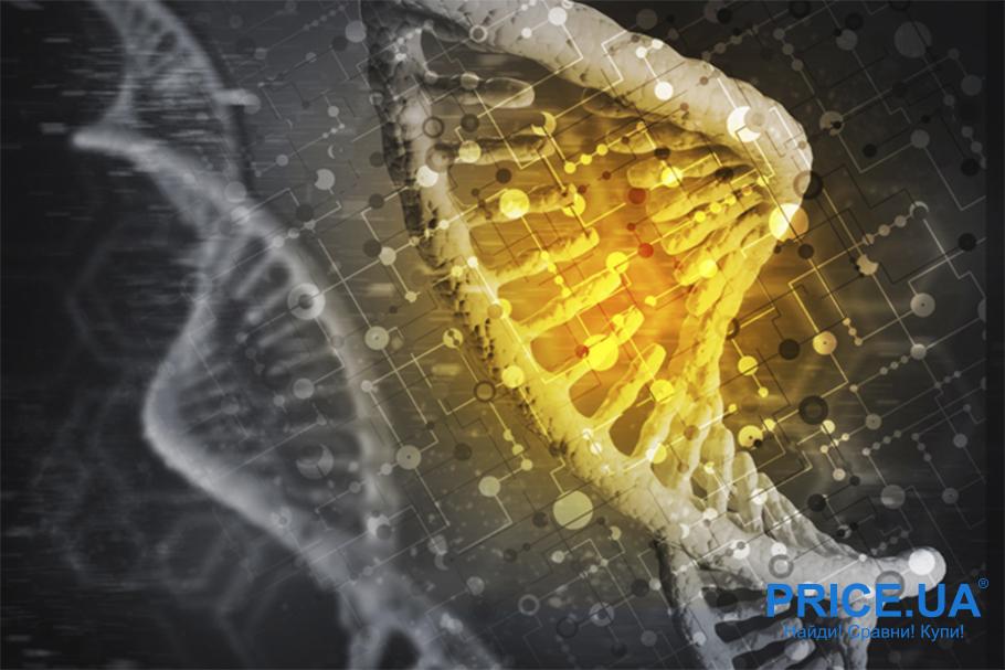 Происхождение коронавируса. Природная теория