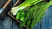 как сохранить зелень свежей долго