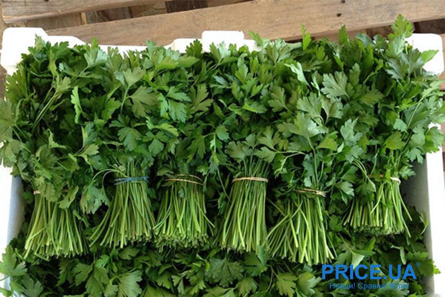 Лайфхак: как хранить зелень. Подготовка к заморозке