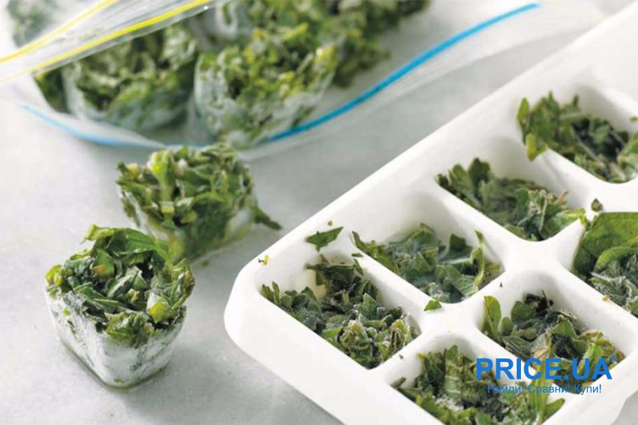 Лайфхак: как хранить зелень. Заморозка в кубиках